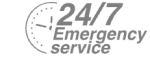 24/7 Emergency Service Pest Control in Strawberry Hill, Whitton, TW2. Call Now! 020 8166 9746